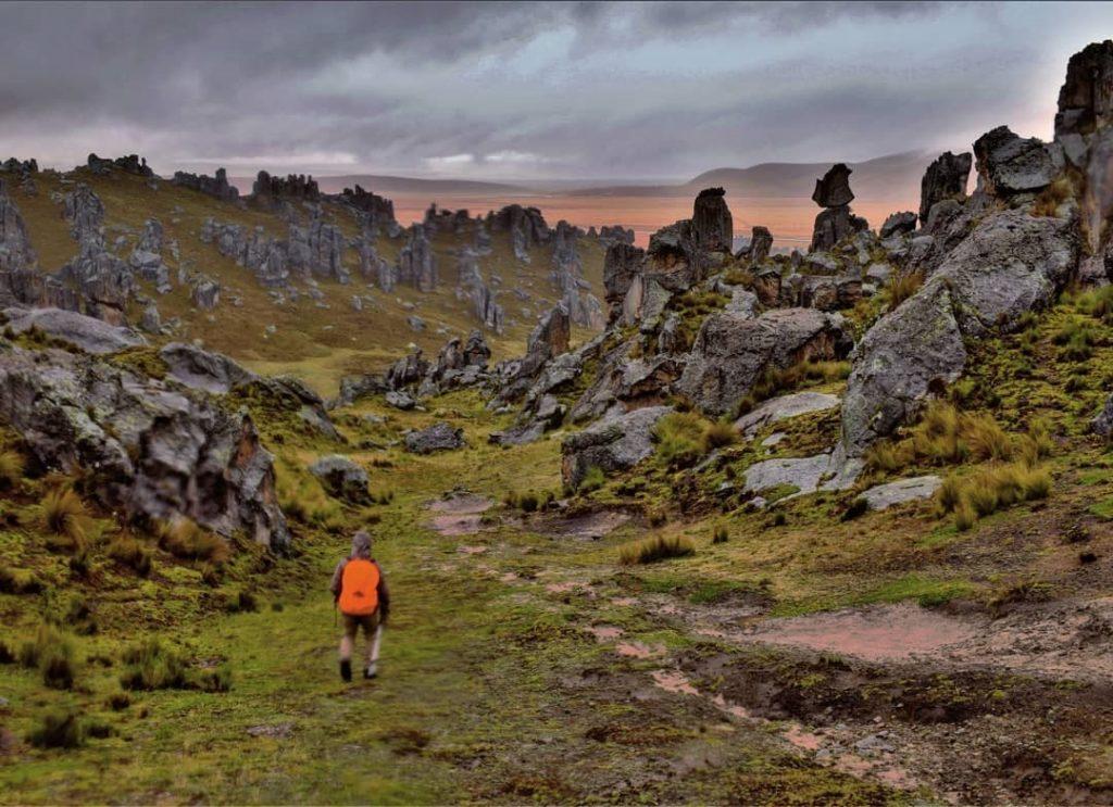 Huayllay Stone Forest, forest, peru, rocks,